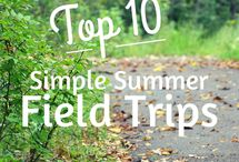 Field Trips School & Home School / This board includes great field trip ideas for families and school teachers: hands on learning, outdoor learning, school trips, elementary.