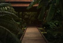 Naples Botanical Garden - Instagram Favorites