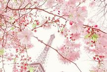 The city of Love - Parisian Chic