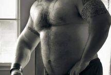 DADD¥ BEARS MUSCLE