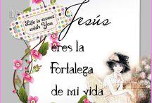 JESUS EL SALVADOR DEL MUNDO