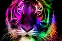 lion inspi