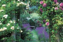Dreamy Gardens / Dreamy gardens, walk ways, walled gardens, stonework, footpaths, hedges, flowers, cottage gardens... beautiful places to dream and renew.