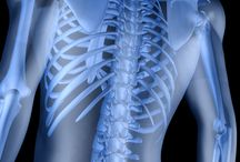 Ortho/Spine