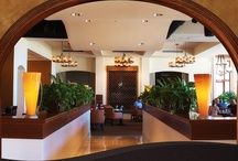 Commercial Projects By Interior Solutions Inc
