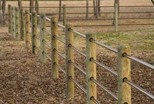 Farm/horses