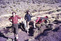 Kilimanjaro Mountain in Tanzania / Recording the climbing of Kili by a group of four colleagues