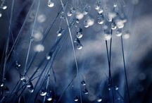 Rain/Droplets/Light