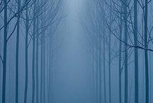 Natureza / by Diego Zanutti