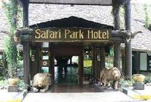 Safari Places / Safari lovers.. Must visit!
