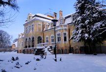 Mielno - Pałac / Pałac w Mielnie został zbudowany w 1904 r. według projektu architektów Erdmana i Spindera dla Wilhelma von Wendorffa.  W 1932 r. majątek przejął Jerzy Wendorff, który zginął pod Kijowem w czasie 2. wojny św. Do stycznia 1945 r. majątkiem zarządzała jego matka, Paula Wendorff. Po wojnie majątek został przejęty przez Skarb Państwa Polskiego i utworzono w nim Dom Wypoczynkowy, a najbardziej znanym gospodarzem obiektu był Dom Wczasów Dziecięcych. Obecnie pałac jest wystawiony na sprzedaż.