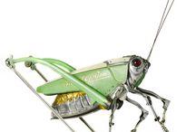 insecte métal