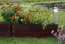 Blomsterbed og murer / Hage