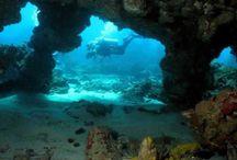 Alphadivers / Mergulho, cursos e viagens para mergulho. Conheça os cursos de mergulho da Alphadivers/IANTD