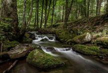 Beautiful places of Eastern Slovakia