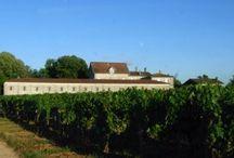 Château Jeandeman / visite du vignoble et des chais au Château Jeandeman à Canon Fronsac, Bordeaux Réservez avec winetourbooking.com