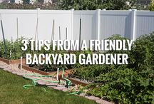 Garden Ideas and Tips / Tips, tricks, and ideas about planting and gardening