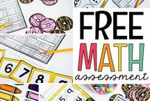 mathes assessment