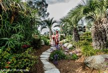 A path to paradise