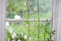 Garden Inspirations / garden inspirations for the home or apartment / by Renee J