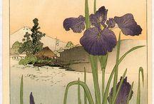 Ирисы в японской живописи