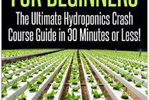 Hydroponics 1