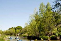 Verde Valley Organizations / Protecting the River
