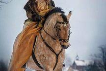 Beautiful horse pics