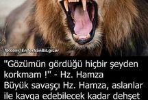 Hz.hamza