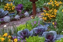 Edible Landscaping Ideas / Edible landscaping ideas worth noting!  #edible #landscape / by Growing The Home Garden