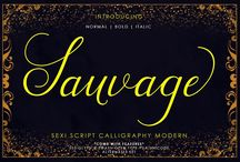 Calligraphy Modern