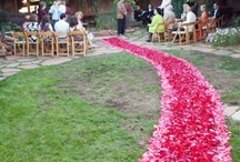 Rose Petal Aisles / creative ways to class up an aisle. Rose petals aisle runners make a bride feel like she is floating down to her groom. Its visually amazing, adds a great element to pictures and makes a bride feel like she has a unique accent to her special day.