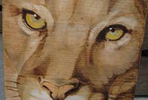 Pumas pyrogravures perso / Pyrogravure sur bois, pigments.