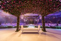 Carousel Bridal Stage / Carousel Signature Bridal Stages