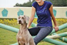 Equestrian T-shirts