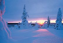 Lapland / Lapland at Christmas