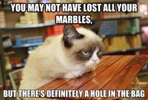 I need a good laugh:)