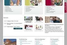 Danish Public Hospital Sites
