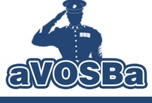 American Veteran Owned Small Business Association