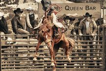 Cowboy up / Horses, working Cowboys , Rodeo