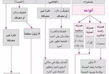 العربية - النحو