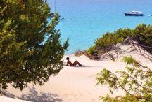 Vacanze / Il mio spirito libero nel mondo
