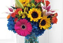 Summertime Flowers / Some of our favorite seasonal flowers! http://www.centralsquareflorist.com
