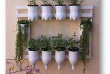 jardin, plamta, patio, deco, verdeeeee