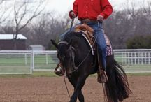 Horse Training Tips / by Colleen Reid