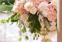 """""""Rose"""" la romantique"""