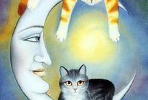 gatitos lunas
