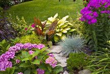 zahrada za terasou