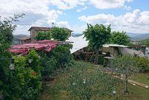 Villa San Martino - Monte Santa Maria Tiberina 20X10.5 / 210mq colore White Tent Fabric T3003