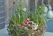 Marta kwiaty na komunię